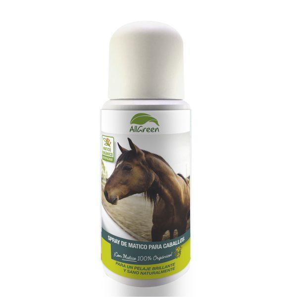Spray de Matico para caballos 100 ml 1