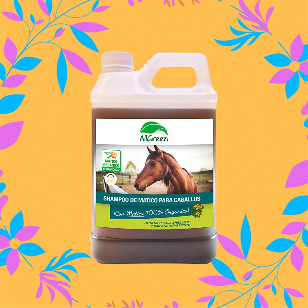 shampoo caballo